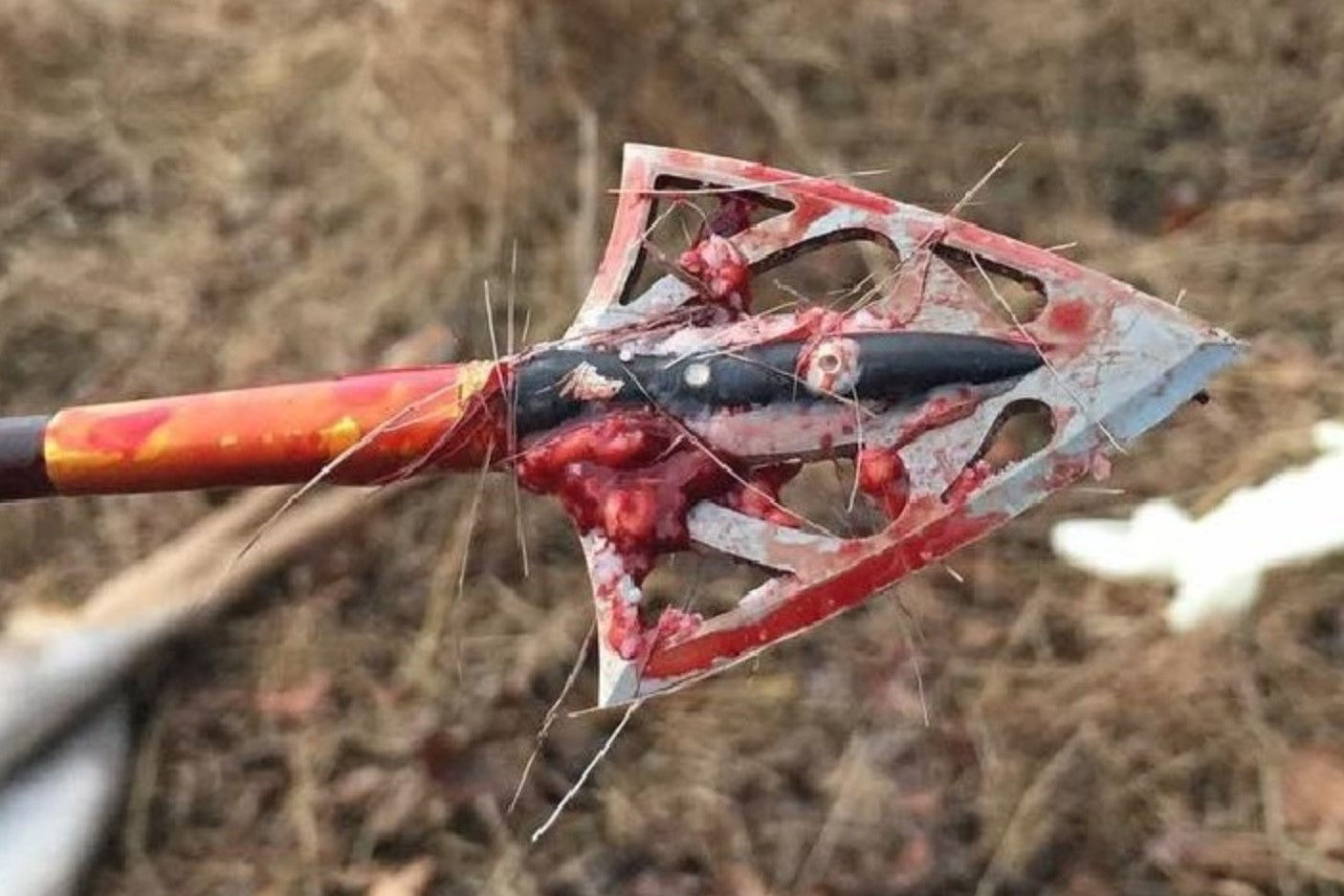 Picture for category Silver Flame® Broadheads
